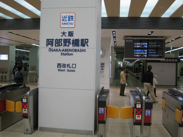 09-yoshino-sakura1.JPG