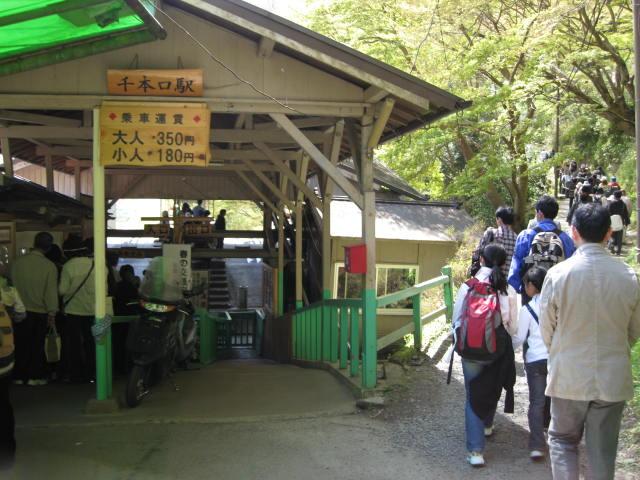 09-yoshino-sakura10.JPG