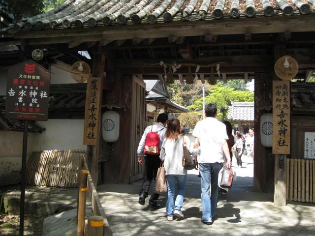 09-yoshino-sakura107.JPG