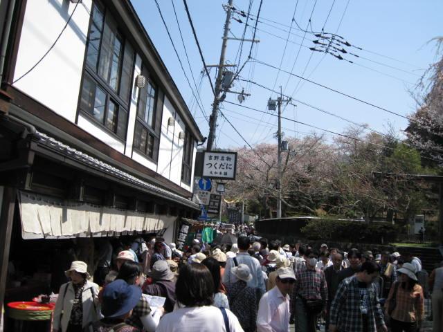 09-yoshino-sakura124.JPG