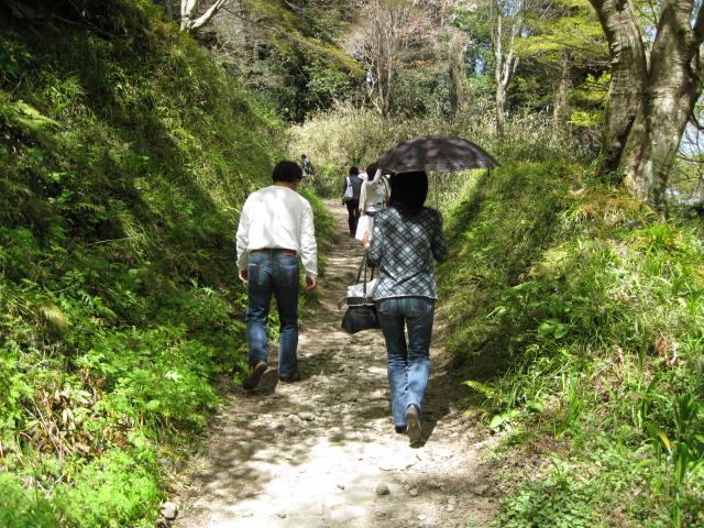 09-yoshino-sakura20.JPG