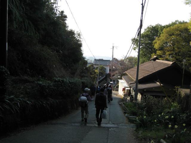 09-yoshino-sakura230.JPG
