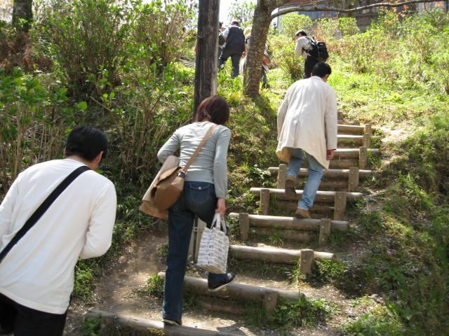 09-yoshino-sakura36.JPG