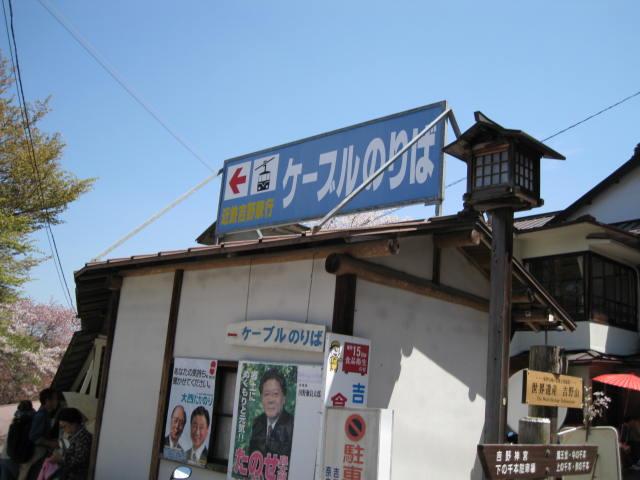 09-yoshino-sakura45.JPG