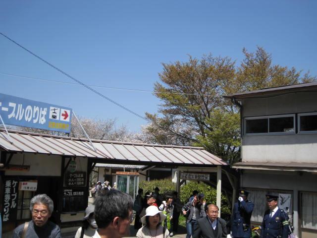 09-yoshino-sakura61.JPG