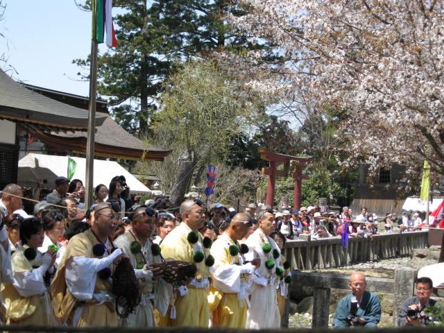 09-yoshino-sakura84.JPG