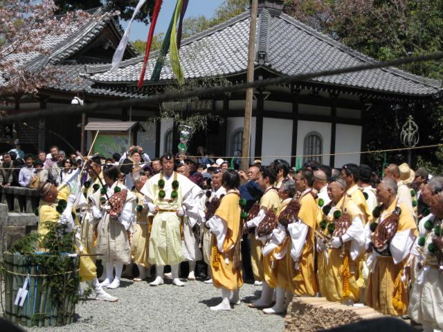 09-yoshino-sakura89.JPG