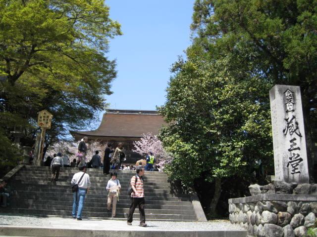 09-yoshino-sakura92.JPG