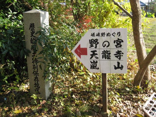 10-koyo-kyoto102.JPG