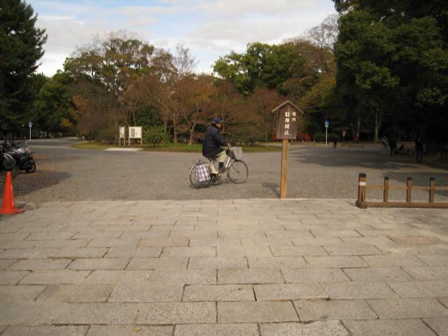 10-koyo-kyoto250.JPG