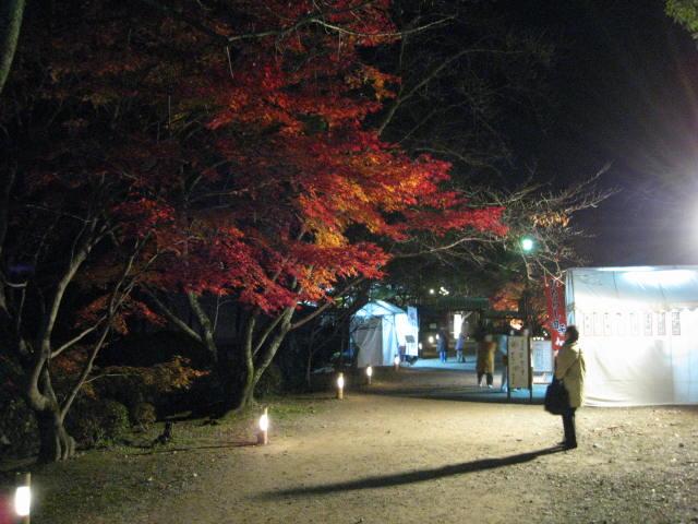 10-koyo-kyoto445.JPG