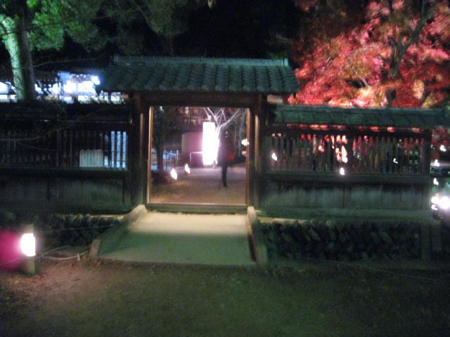 10-koyo-kyoto447.JPG