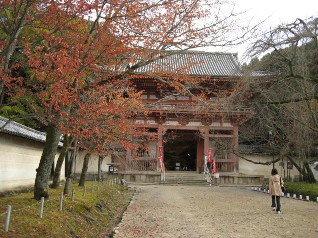 10-koyo-kyoto478.JPG