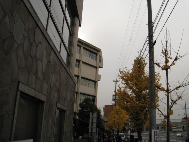 10-koyo-kyoto641.JPG