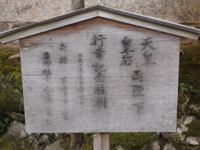 10-koyo-kyoto83.JPG