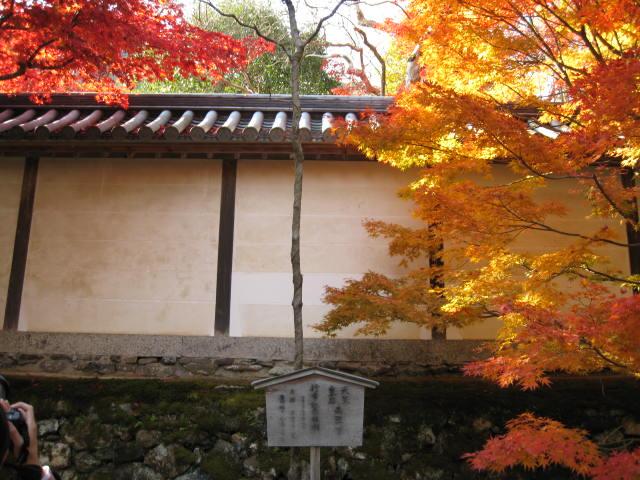 10-koyo-kyoto84.JPG