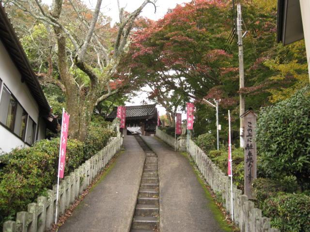 10-koyo-yoshino37.JPG
