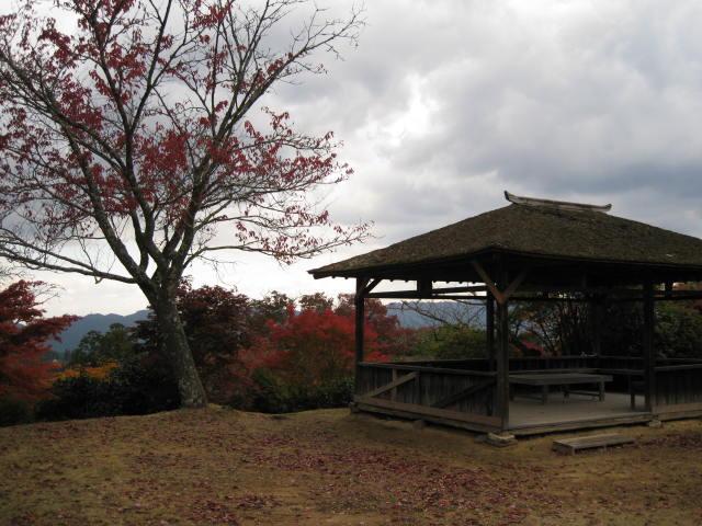 10-koyo-yoshino54.JPG
