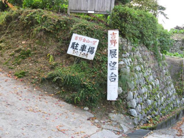10-koyo-yoshino91.JPG