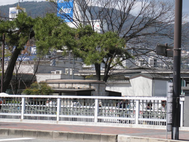 10-shukugawa-sakura45.JPG