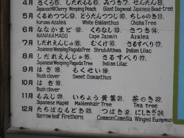 10-sp-kyoto-278.JPG