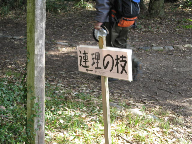 10-sp-kyoto-404.JPG