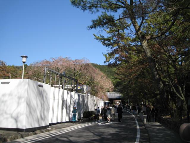 10-sp-kyoto-782.JPG