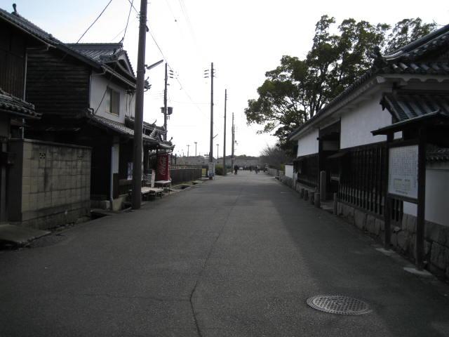 10-sp-okaban-rep32.JPG