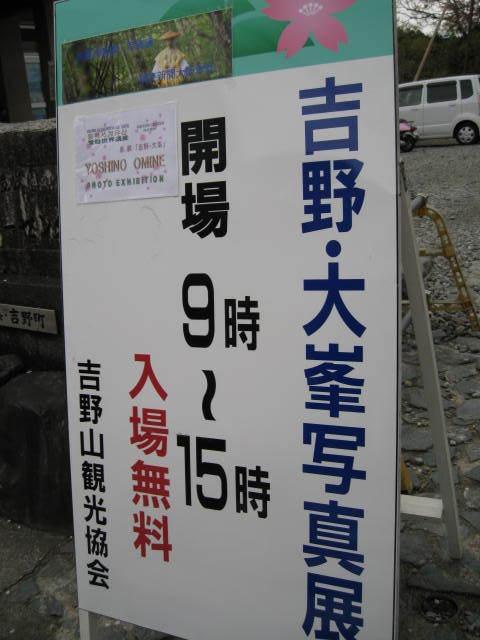 10-sp-yoshino48.JPG
