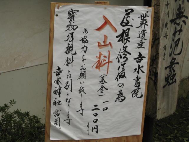 10-sp-yoshino50.JPG