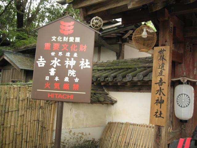 10-sp-yoshino51.JPG