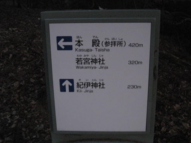10-winter-nara76.JPG