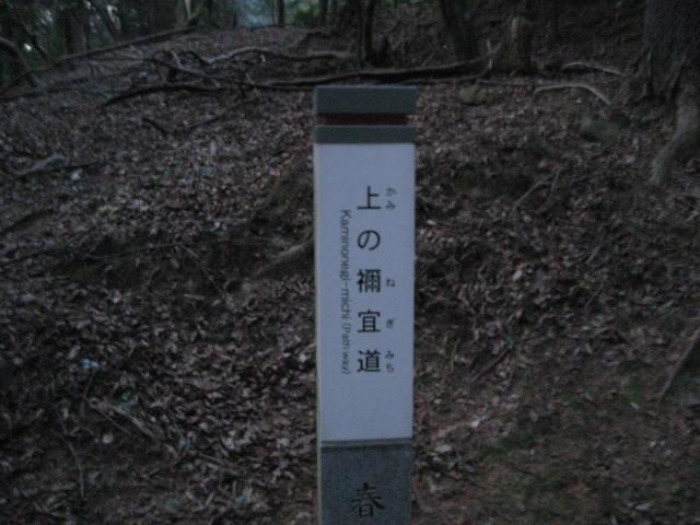 10-winter-nara78.JPG