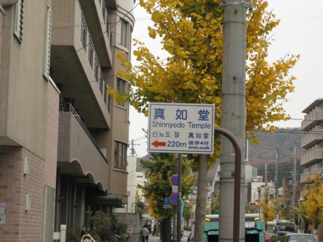 11-koyo-kyoto129.JPG
