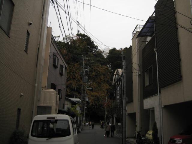 11-koyo-kyoto130.JPG