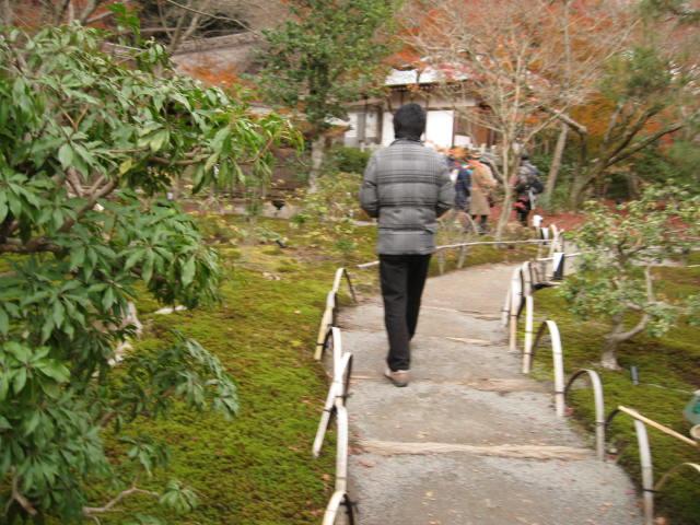 11-koyo-kyoto207.JPG