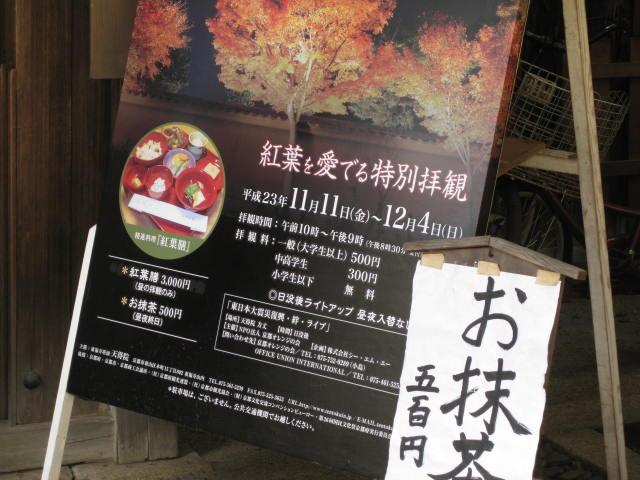 11-koyo-kyoto29.JPG