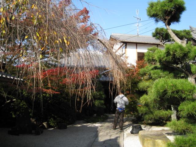 11-koyo-kyoto33.JPG