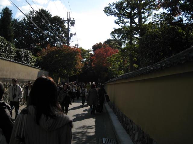 11-koyo-kyoto5.JPG