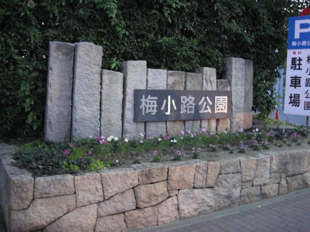 11-koyo-kyoto57.JPG