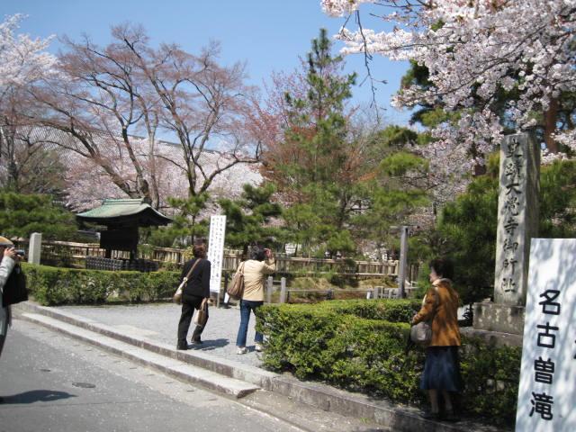 11-sp-kyoto686.JPG