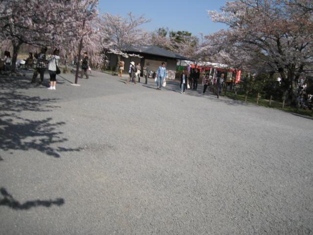 11-sp-kyoto846.JPG