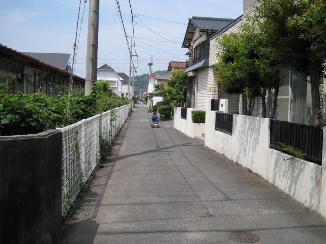 11-sum-rep-sanuki10.JPG
