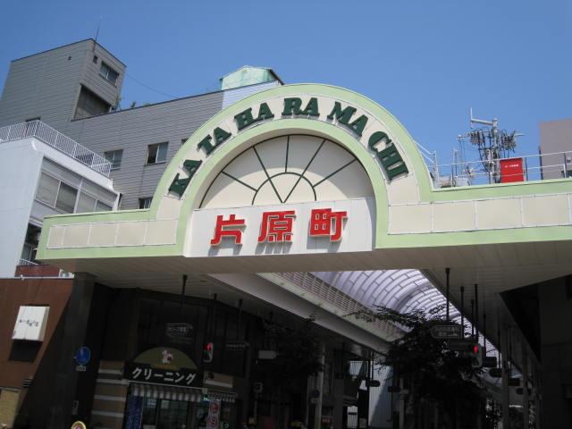 11-sum-rep-sanuki25.JPG