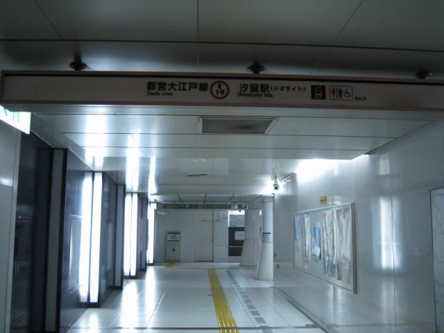 11-sum-tokyo20.JPG