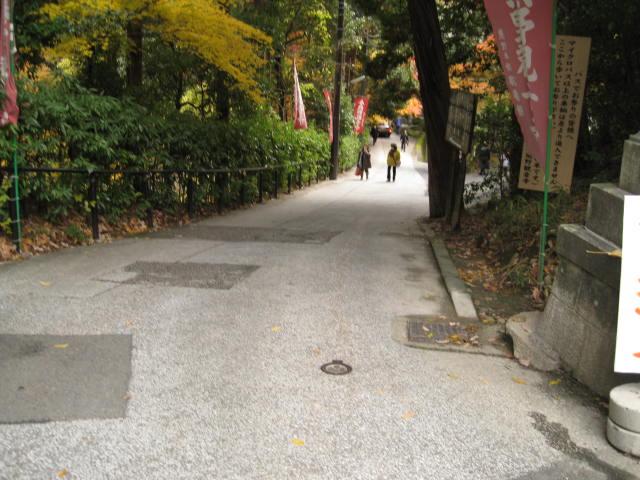 12-koyo-kyoto151.JPG