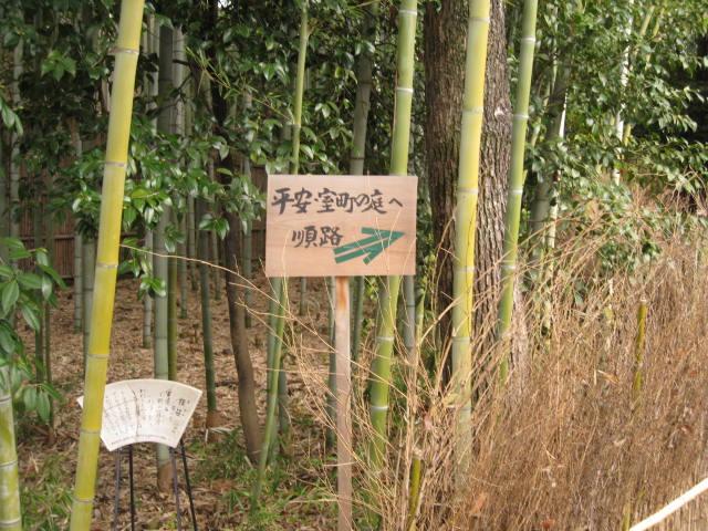 12-koyo-kyoto202.JPG