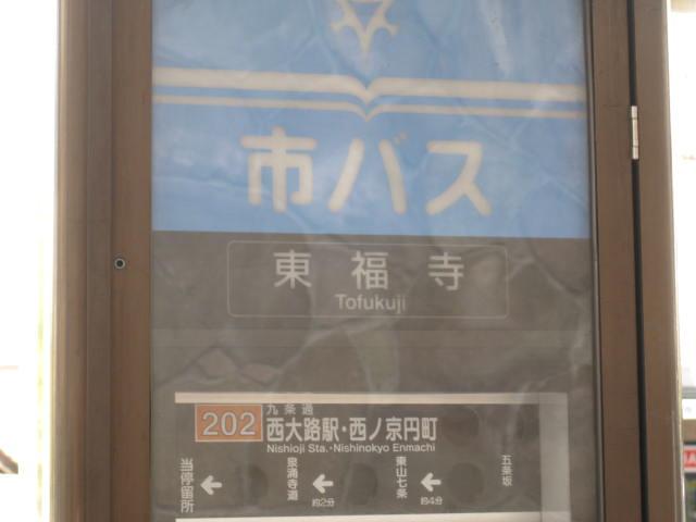12-koyo-kyoto21.JPG