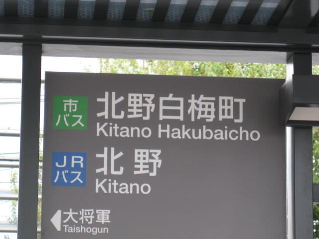 12-koyo-kyoto33.JPG