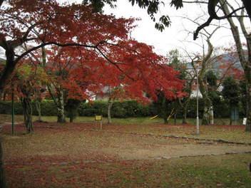 12-koyo-kyoto71.JPG